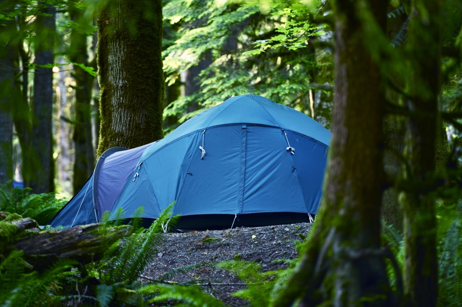 Yogi Bear's Jellystone Park Getting A Good Night's Sleep In A Tent