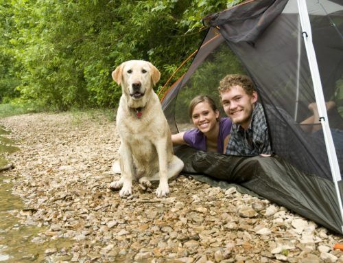 Preparing For the Perfect Fall Camping
