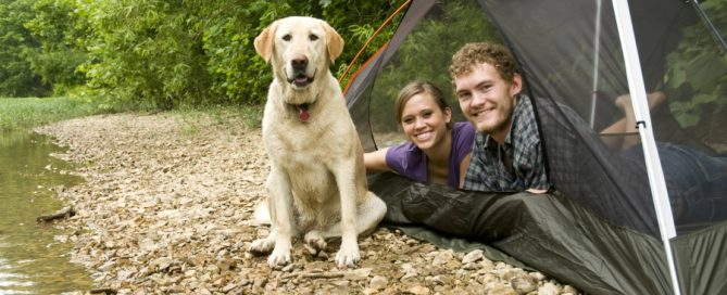 Preparing For the Perfect Fall Camping at RV Park Estes CO